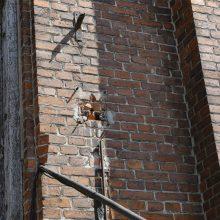 Pastato likimas: istorija virsta griuvėsiais