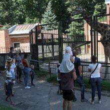 Prieš Zoologijos sodo uždarymą rekonstrukcijai – lankytojų antplūdis