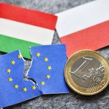 Nei Vengrija, nei Lenkija neatsisako ES biudžeto veto
