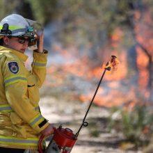 Australijos Naujojo Pietų Velso valstijoje liepsnoja krūmynų gaisrai