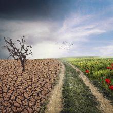 Raudonasis Kryžius: klimato kaita yra didesnė grėsmė nei koronavirusas
