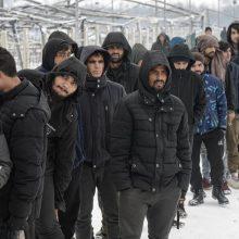 ES tiria galimai neteisėto migrantų deportavimo atvejus