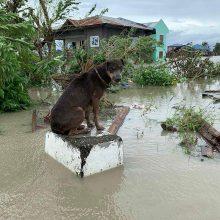 """Taifūnui """"Molave"""" pasiekus Filipinus dingo 12 žvejų"""