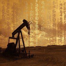 Naftos kainos smuktelėjo, OPEC nesutariant dėl jos gavybos