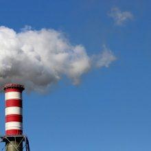 Prancūzijos vyriausybė turės parodyti teismui, kaip kovoja su klimato kaita