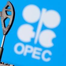 Prieš prasidedant OPEC+ susitikimui, išaugo naftos kainos
