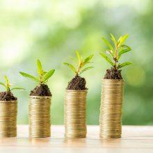 Per praėjusį dešimtmetį verslo investicijos į mokslinius tyrimus išaugo dvigubai