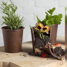 Internetą užkariaujantys šokoladiniai gėlių vazonėliai nustebins net ir didžiausius smaližius
