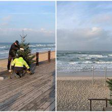 Šventinė dvasia – ir pajūryje: paplūdimių smėlynuose papuoštos eglutės