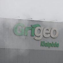 """Savivaldybė atmetė """"Grigeo Klaipėda"""" paraišką: dokumente klaidinanti informacija"""