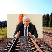Geležinkelio plėtra Girulių miške: savivaldybė siekia išsaugoti mišką