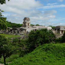 Intervencija: didžiąją dalį Palenkės majų pastatų pasiglemžė džiunglės. Vietiniai juokauja, jog meksikiečiai turi gerti daugiau kokakolos, kad ši kompanija finansuotų dar daugiau archeologinių kasinėjimų.