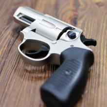 Vilniaus miškelyje rastas revolveris sudomino pareigūnus