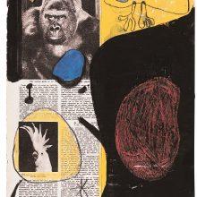 """Gorila, papūga ir angelas rojaus soduose"""", iš parodos """"Joan Fontcuberta: Istorijos krizė"""""""