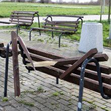 Chuliganai nusiaubė Sąjūdžio parką: gyventojai prašo kamerų