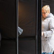 D. Henke: dvigubos pilietybės referendumas – Lietuvos ateities klausimas