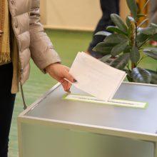 Seimas palaiko idėją kurti rinkimų apygardą balsuojantiems užsienyje