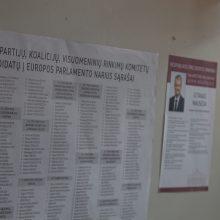 Europos Parlamento rinkimai: ką reikėtų žinoti einant balsuoti?