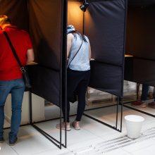 Tęsiamas išankstinis balsavimas prezidento ir EP rinkimuose