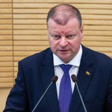 Premjeras: tyrimas dėl I. Rozovos neturi tapti politinės kovos įrankiu