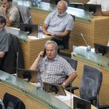 Seimas įtvirtino įstatymu: Vytis bus pagrindinis Lukiškių aikštės akcentas