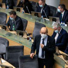 Seimas jau sudarė devynias komisijas