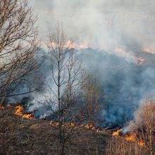 Vilniaus rajone – didžiulis žolės gaisras: ugnis gali persimesti į pastatus