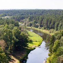 Lietus atgaivino Lietuvos upes: fiksuojamas padidėjęs vandens lygis