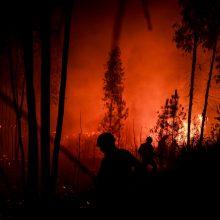 Pragaras Portugalijoje: tūkstantis ugniagesių kovoja su miškų gaisrais