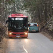 Ar bus autobusas, lems politinis sprendimas