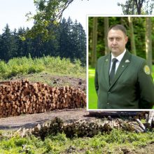 V. Kaubrė kol kas nepaskirtas miškų urėdu, laukiama STT pažymos