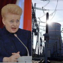 D. Grybauskaitė: būtina siekti Astravo jėgainės uždarymo