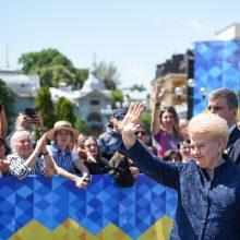 """D. Grybauskaitė naująjį Ukrainos prezidentą ragina """"sutraiškyti"""" oligarchinę sistemą"""