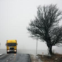 Įspėja: šarma padengusi Kretingos ir Ukmergės rajonų kelius