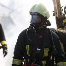 Šalčininkų rajone dega miškas: išsiųsti ugniagesiai ir medikai