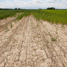 Varėnoje – ekstremali situacija dėl sausros