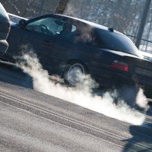 Pritarta A. Širinskienės siūlymui atidėti taršių automobilių mokestį