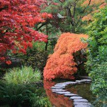 Sostinės savivaldybė siekia perimti japoniško sodo projekto kontrolę