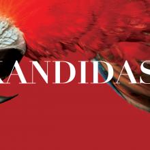 """""""Kandidas"""" – operetė su miuziklo ir operos spalvomis"""