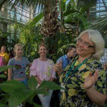 """""""Kvapų naktis"""" VDU Botanikos sode subūrė ir užbūrė tūkstančius lankytojų"""