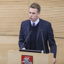 G. Landsbergis apie Konstitucijos pataisą: galimos provokacijos