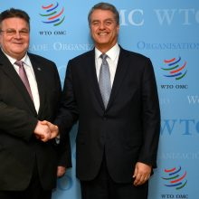 L. Linkevičius susitiko su PPO generaliniu direktoriumi