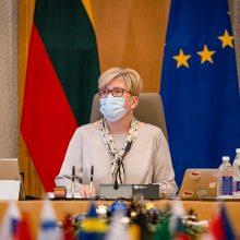 Premjerė džiaugiasi ministrų darbo pradžia: įsivažiuoja sparčiai