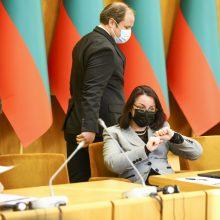 Šešėlinei Vyriausybei vadovaus R. Karbauskis, S. Skvernelis liko be posto