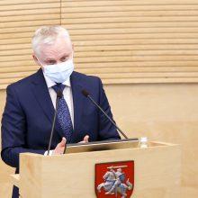 V.  Čmilytė-Nielsen pristatė Seimui V. Mizaro kandidatūrą į KT teisėjus