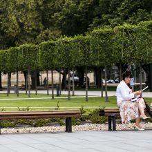 Ragina Vilniaus valdžią stabdyti Lukiškių aikštės memorialo projektą