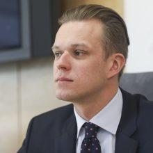 G. Landsbergis: balsavimas dėl pirmalaikių rinkimų galėtų suteikti ramybės