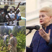 D. Grybauskaitės veiksmų planas dėl migrantų krizės: nepozuok prie tvoros, kurios neturi