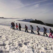 Prancūzijos Alpėse per sniego griūtis žuvo septyni žmonės
