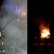 Pagalbos šauksmas iš Kruonio miestelio: ugnis šeimą paliko be namų
